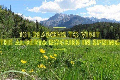 101 Reasons to Visit the Alberta Rockies In Spring