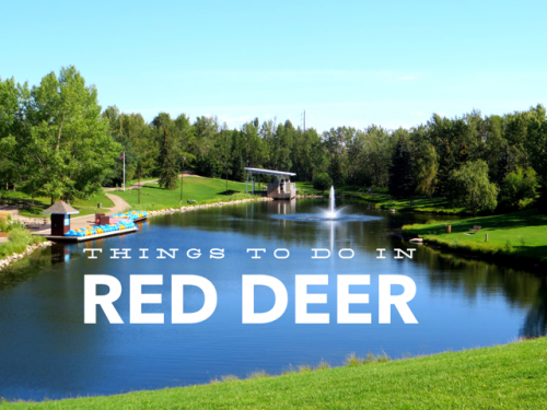 Things to do in Red Deer