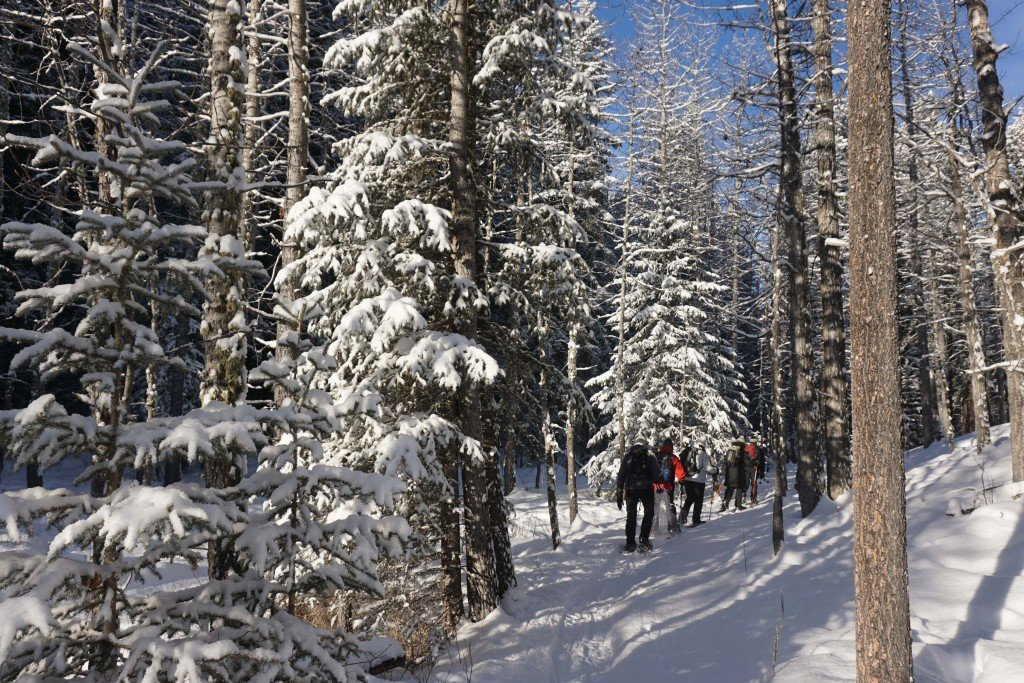 Finally Winter Wimps Out >> Winter In Canada Should You Get Out Of Bed Travel Tales Of Life