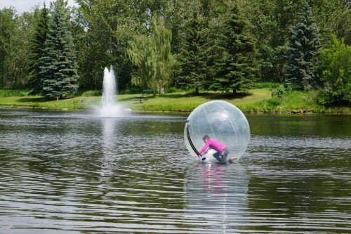 Red Deer's Bower Ponds – A Laughing Water Ball